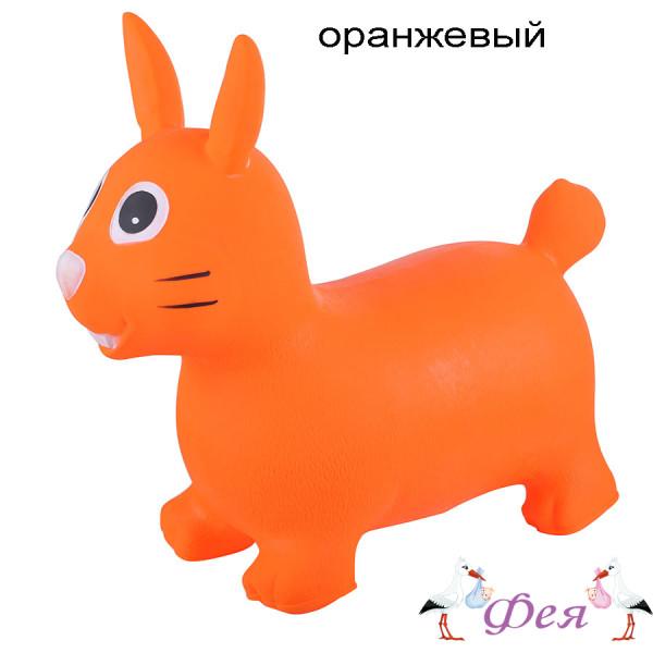 зайка оранж